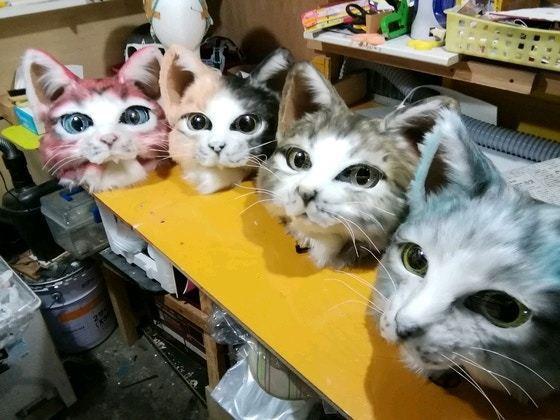 超可愛的4色貓貓頭套。(Twitter@Zerozero93)