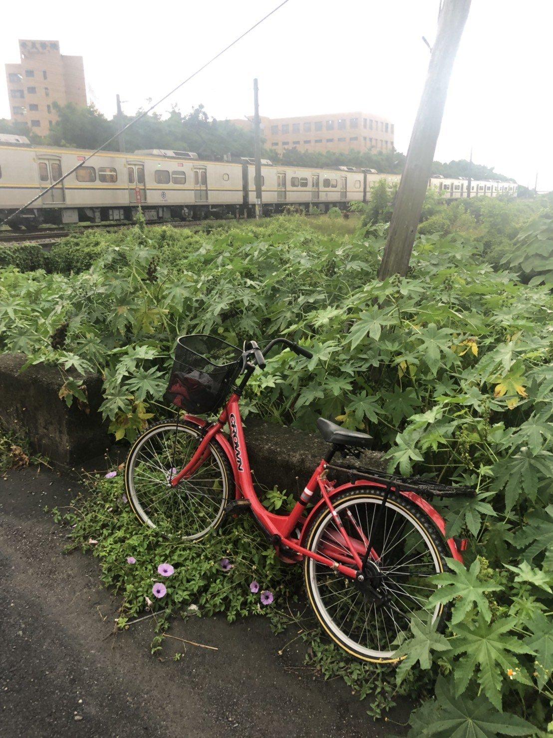 疑似男子的腳踏車。記者謝進盛/翻攝