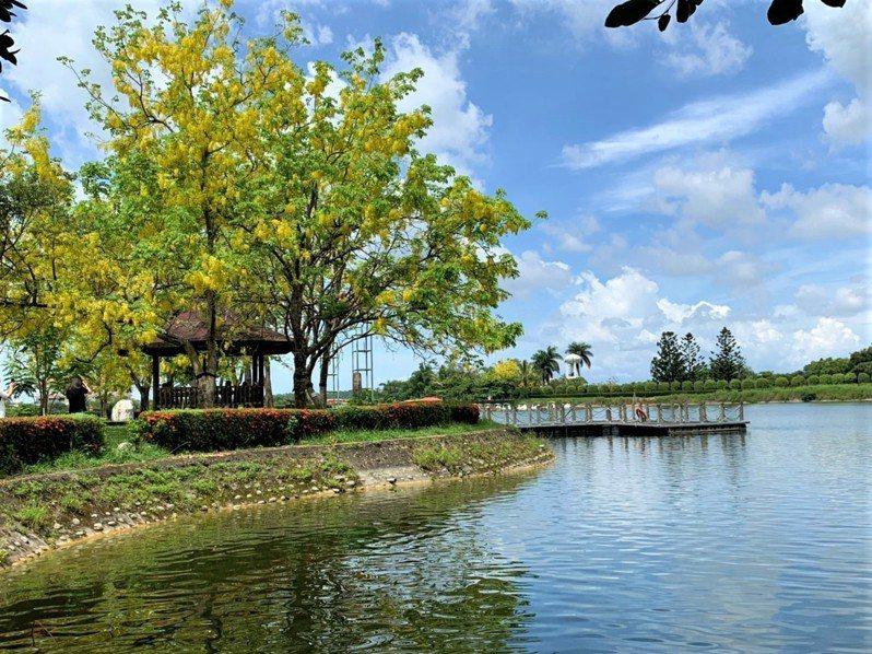 台南虎頭埤風景區阿勃勒盛開,藍天白雲映照湖水美不勝收。記者吳淑玲/攝影