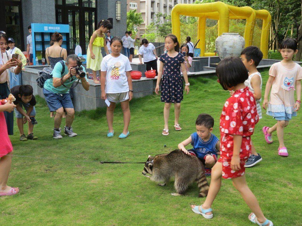 小朋友與萌寵浣熊同樂,現場氣氛愉悅。圖/鄉林建設提供