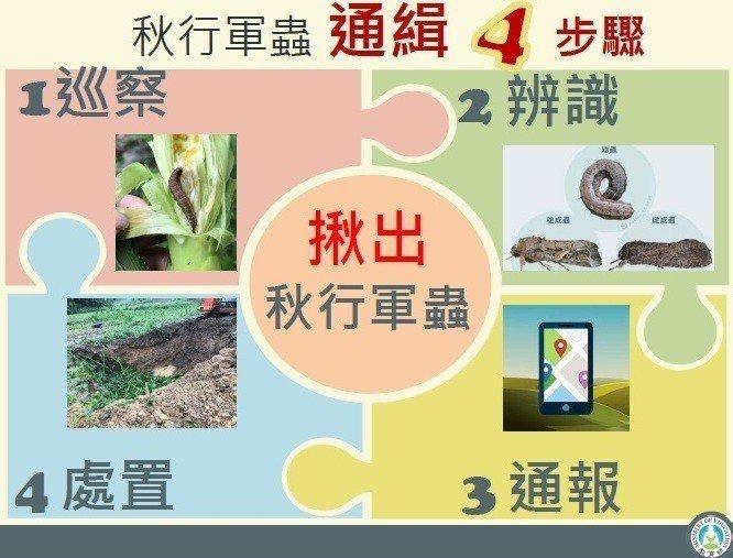 教育部設定秋行軍蟲防治四步驟並製作懶人包,今通令各級學校加強防疫。圖/教育部提供