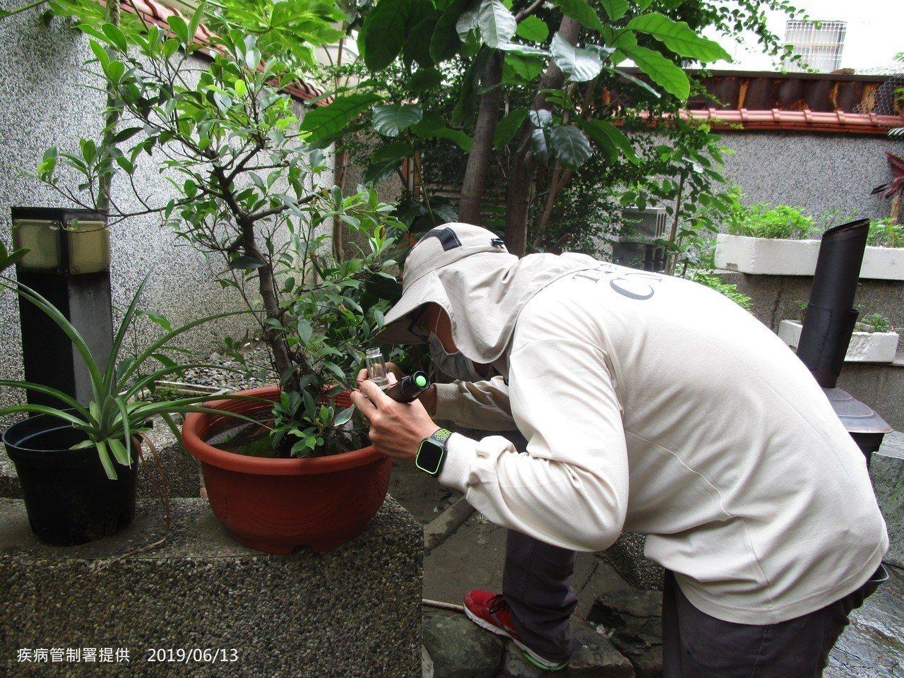 疾管署防疫人員仔細檢視盆栽是否有病媒蚊孳生。圖/疾管署提供