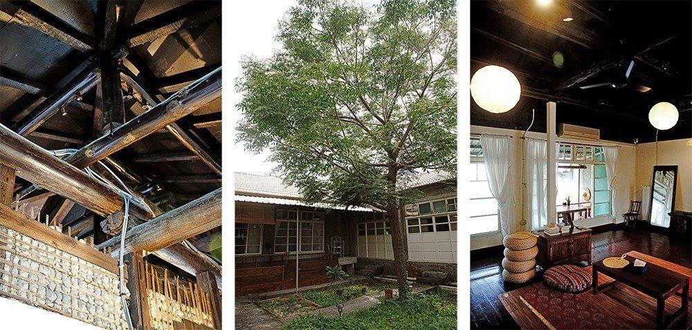 (左)訴說歷史軌跡的木造屋頂。(中)後院一棵老楝樹,惹來原住戶婆婆思念的淚水。(...