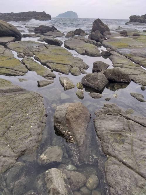 基隆海岸秘境走紅… 人一多海兔不見 蟹、魚也驚慌
