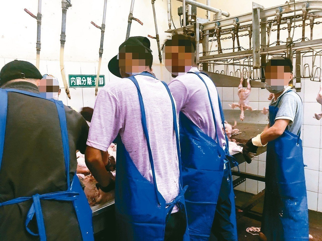 圖為康寧大學之前的斯里蘭卡學生在台灣屠宰場打工情形。 圖/教團提供