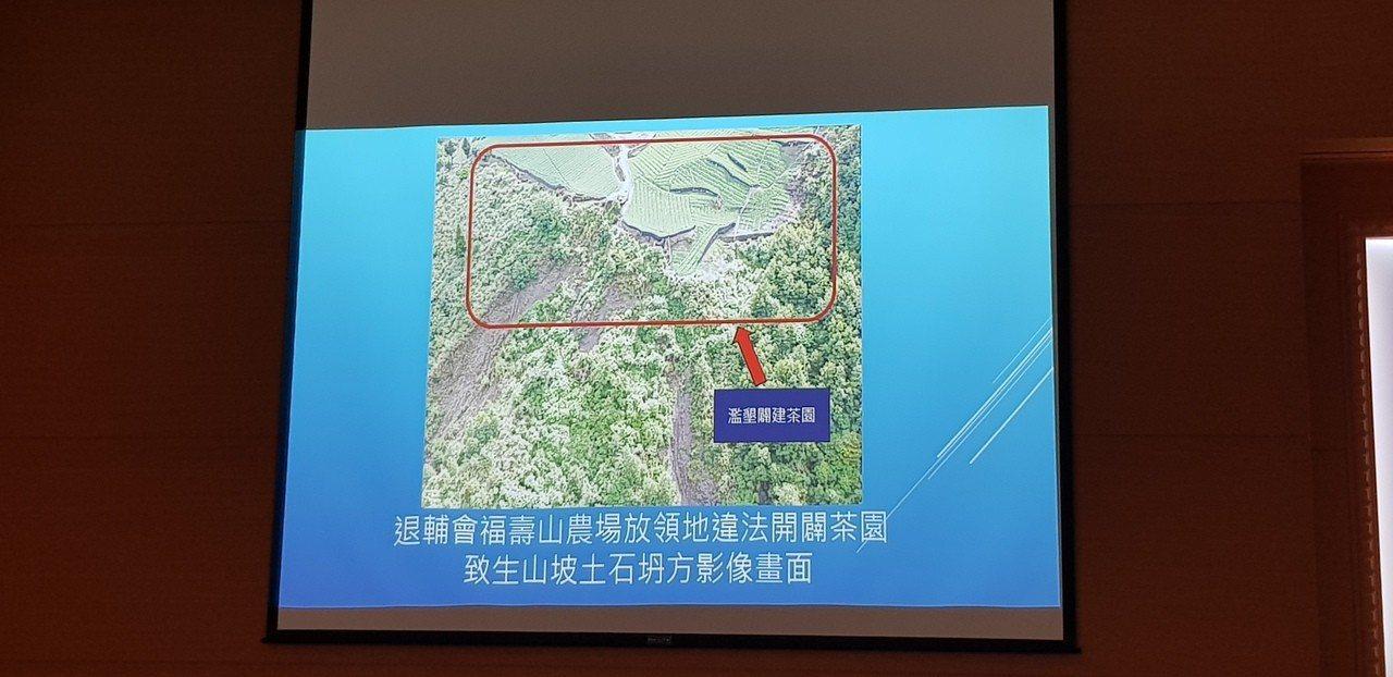 台中和平區退輔會福壽山農場違法開闢茶園。記者張宏業/翻攝