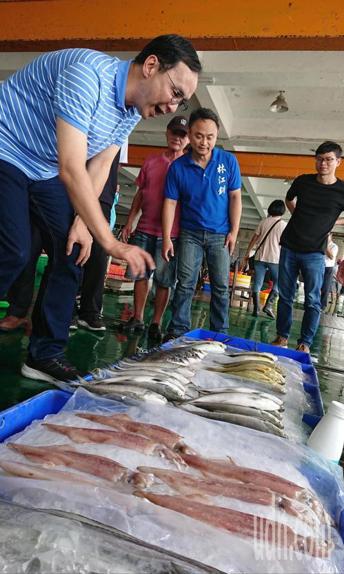 朱立倫今天下午參訪嘉義東石魚市場。記者卜敏正/攝影