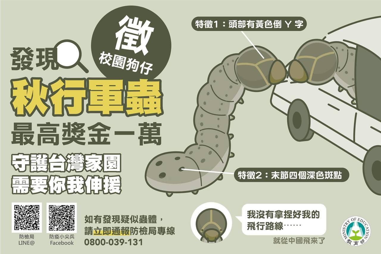 教育部推出防治秋行軍蟲懶人包。圖/擷取自教育部臉書粉絲專頁