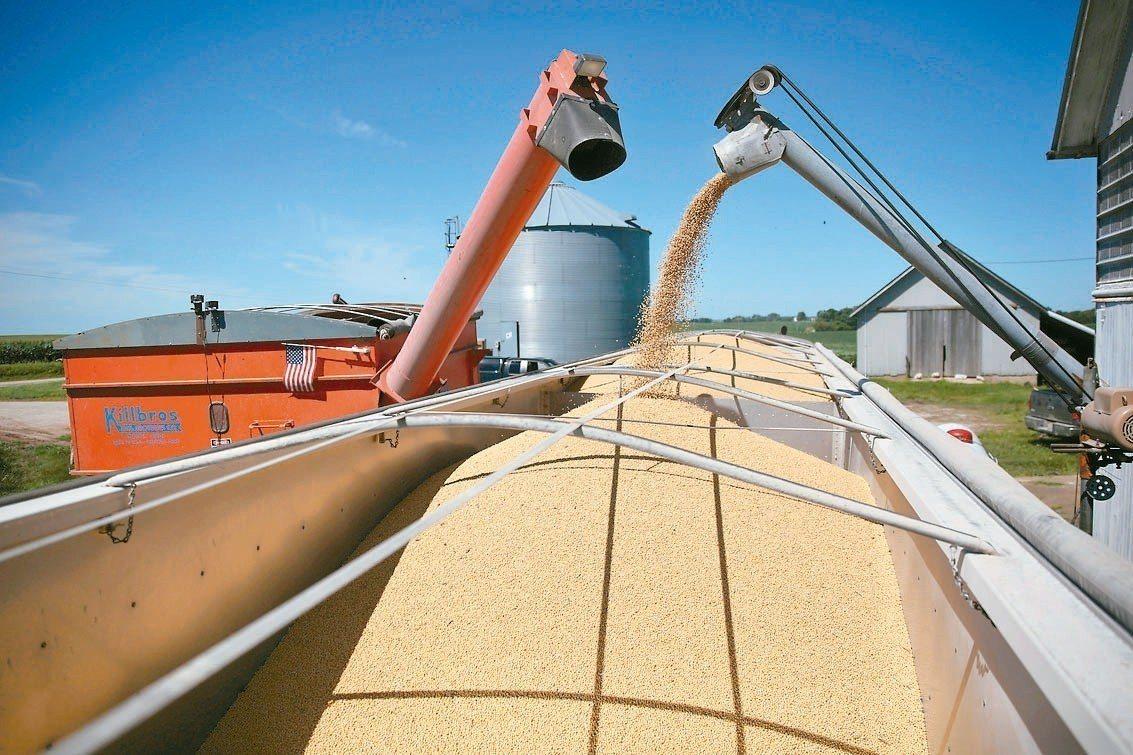 貿易戰前景不明、中國豬瘟疫情,以及全球黃豆產量大增,衝擊市場對美國黃豆的需求。 ...