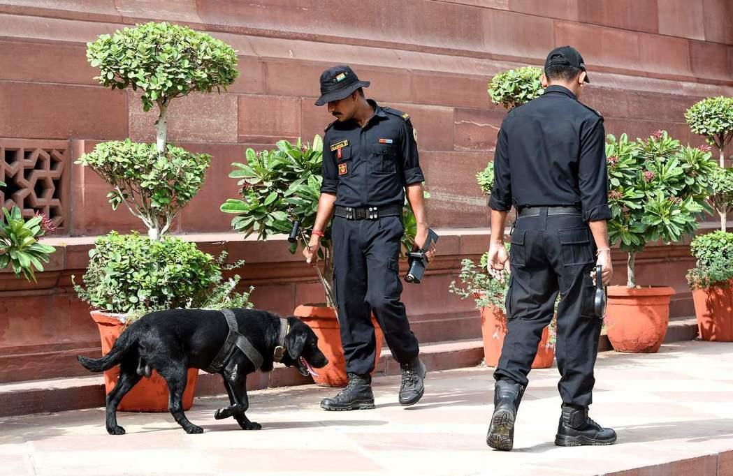 印度國會17日開議,安全人員在開議前帶著警犬在國會周邊進行安全檢查。 (法新社)