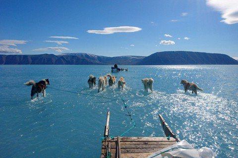 圖為今年6月13日由極地科學家歐森(Steffen M. Olsen)攝影,格陵...
