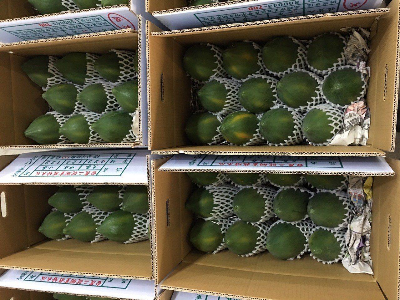 美濃木瓜上電視 高市農業局攜購物台推廣網室木瓜