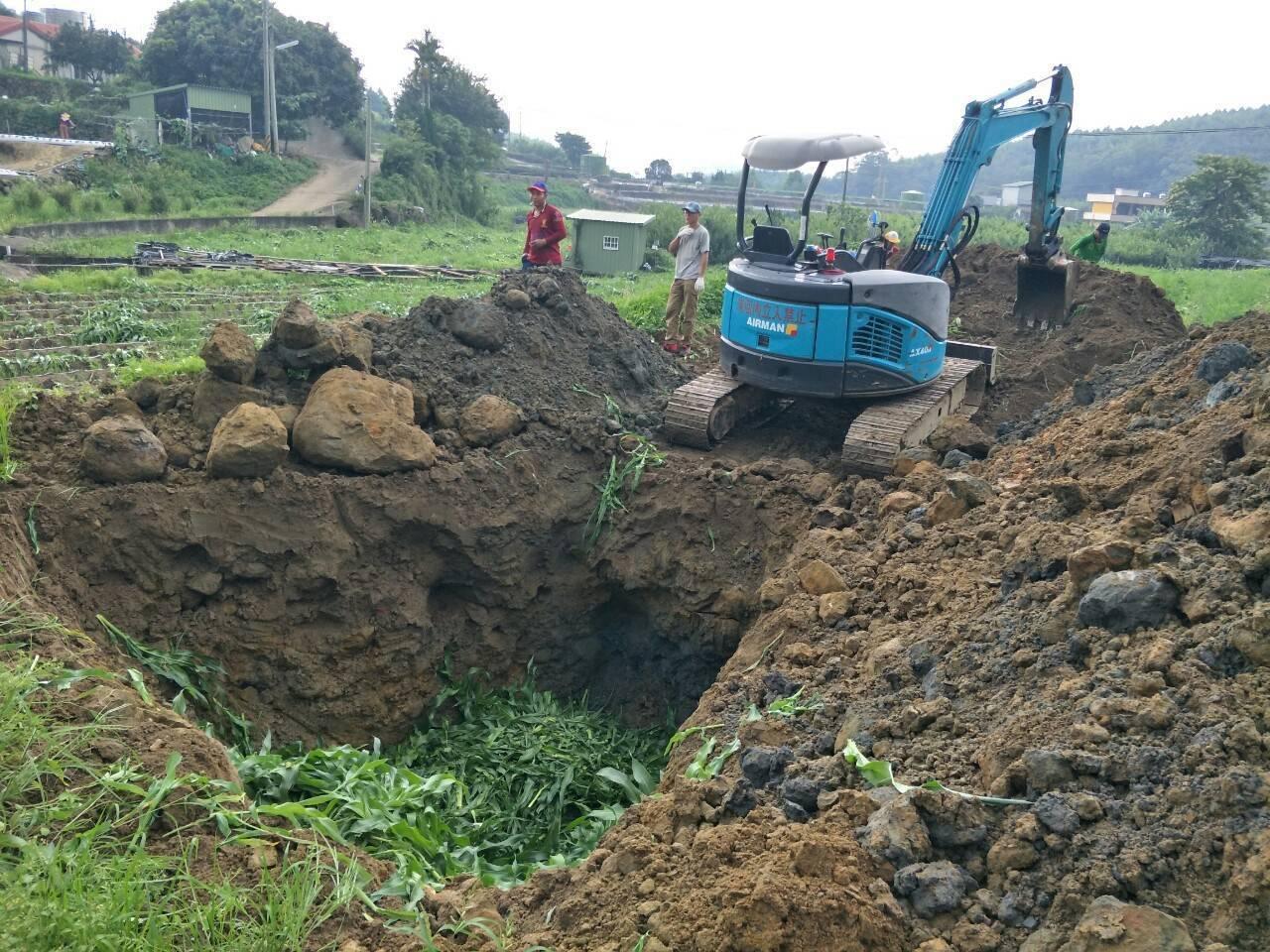 苗栗縣大湖鄉發現秋行軍蟲的玉米田,全面銷毀,就地掩埋。記者劉星君/翻攝