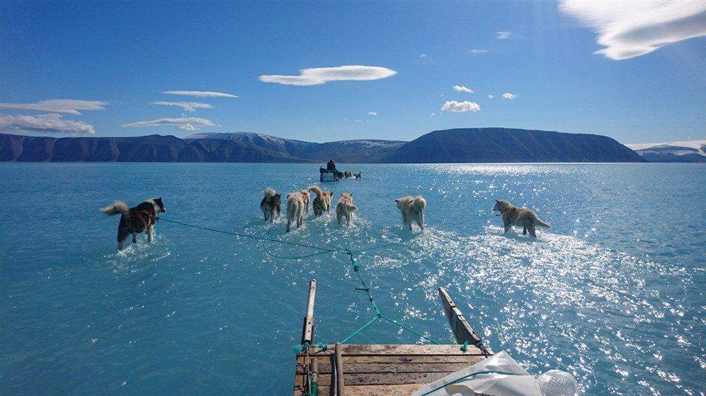 丹麥氣象研究所的科學家上週在格陵蘭北部,拍攝冰層提前融化令人震驚的照片於網路瘋傳...