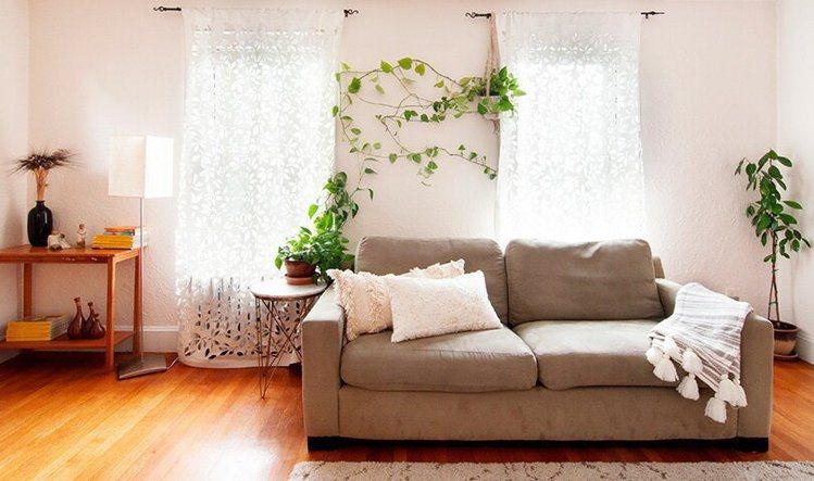 在簡約的房型中添上綠意,能讓視覺更有重點和舒適。圖/ 日本樂天,女子學提供