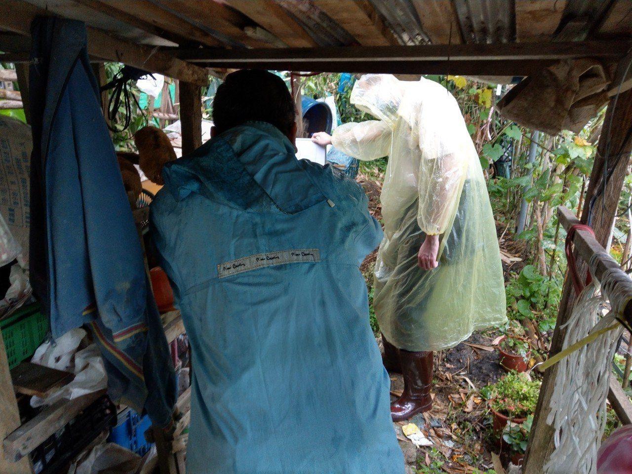 衛生局人員與各區衛生所每月進行區里病媒蚊密度調查,掌握新北病媒蚊密度變化。圖/新...
