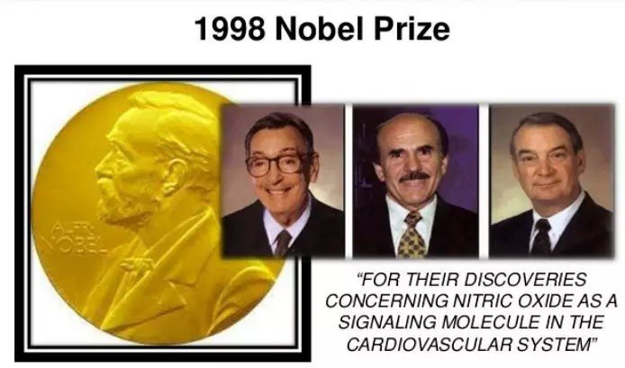 1998年,關於一氧化氮生理機制的研究,收穫了諾貝爾生理學和醫學獎。