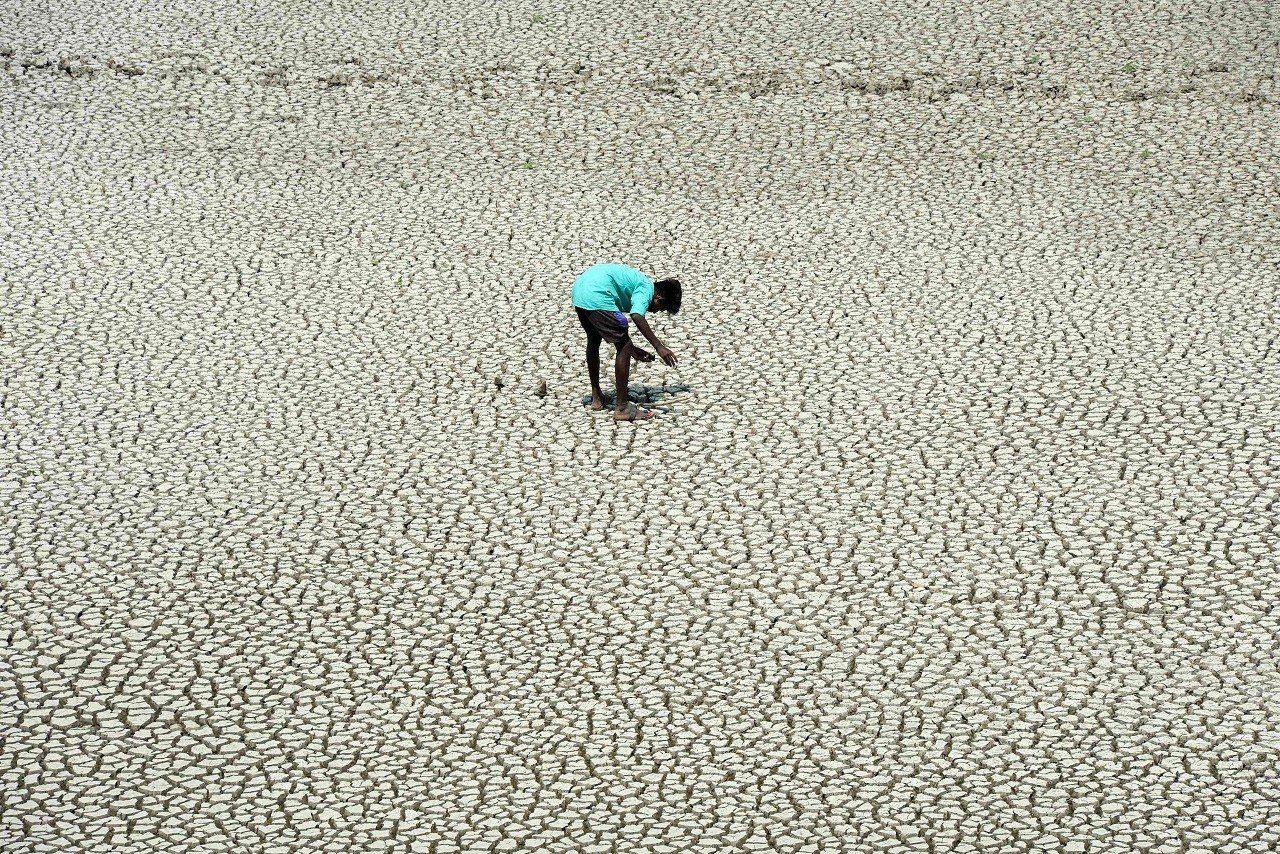 一名印度童子軍5月21日走在市郊已乾涸的Chembarambakkam湖床尋找泥...