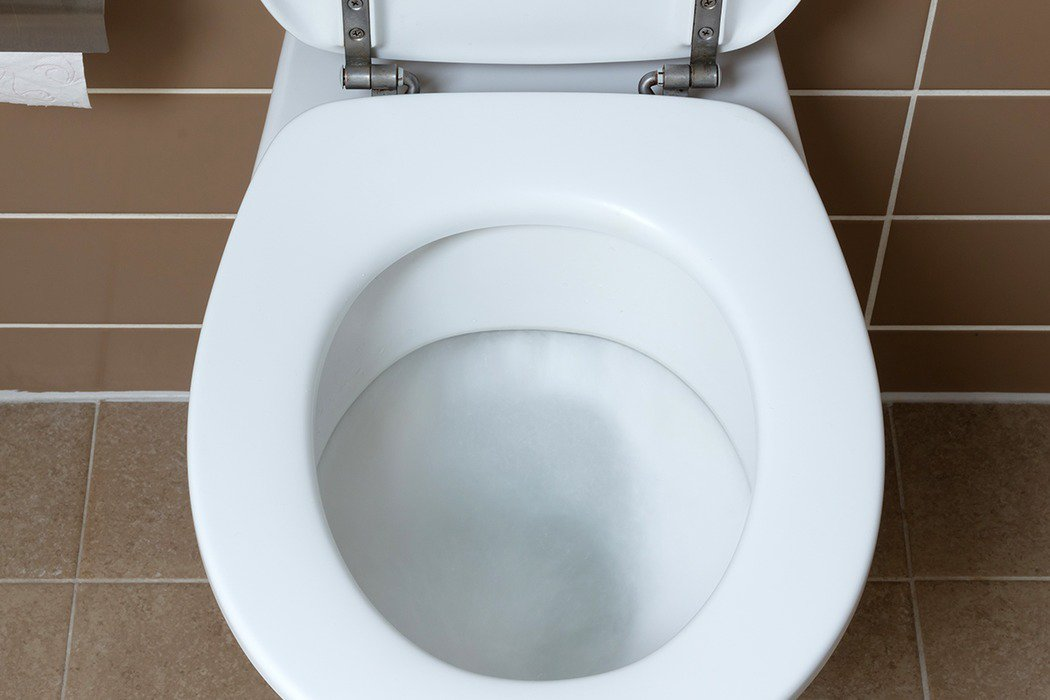 多數民眾仍認為「坐式馬桶很髒」,怕遭感染,但看在感染科醫師眼中,在外使用坐式馬桶...