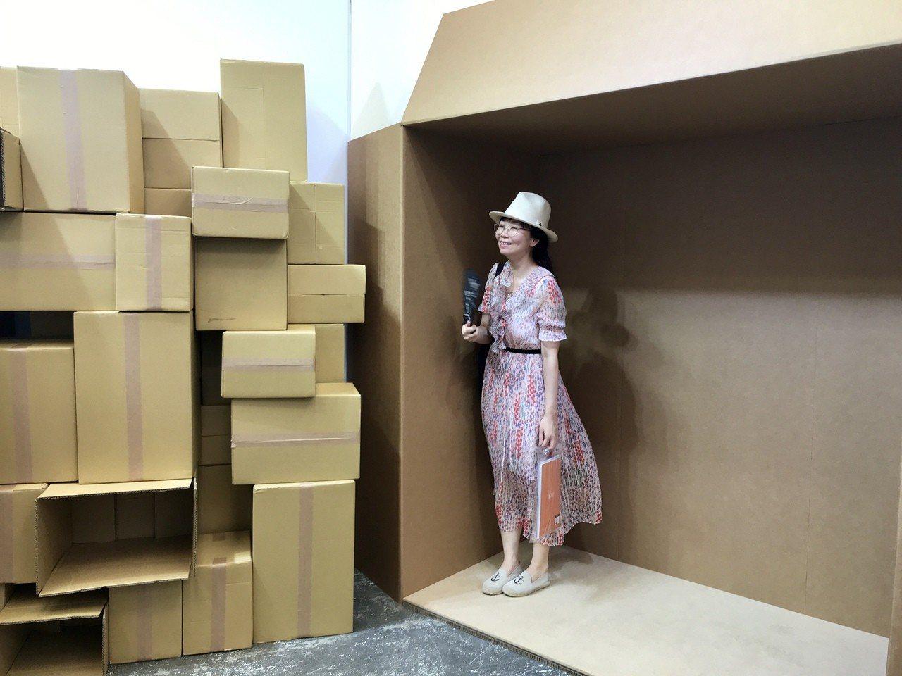 設置貓咪最愛的大型紙箱。記者江佩君/攝影