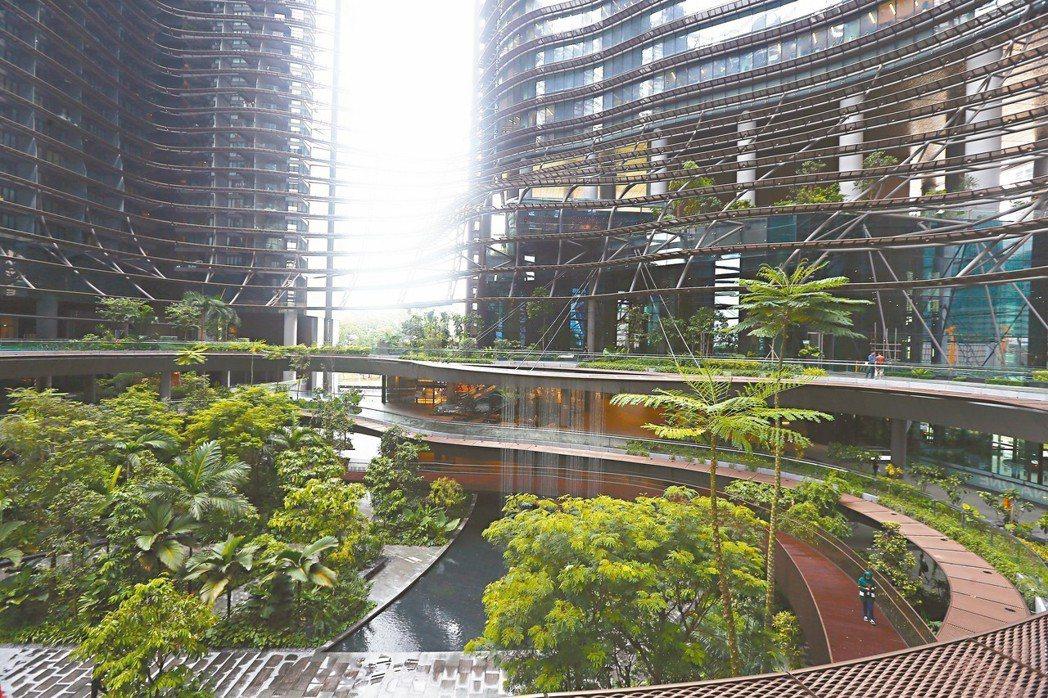 新加坡為了對抗溫度升高,不只在路面種樹,連屋頂、每層樓的垂直空間都不放過。 記者...