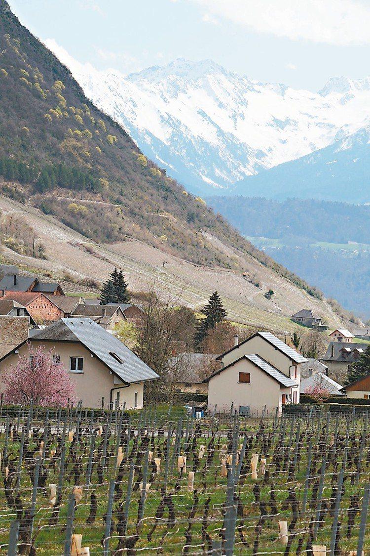 Chignin村是薩瓦最知名的葡萄酒村,生產世界級的Roussanne白酒。圖/...