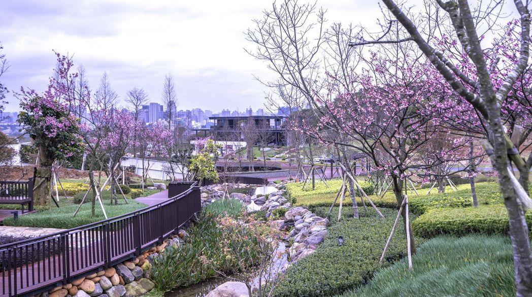 壹山擁有近五萬坪的城市花園,日本櫻花樹散步道及楓樹主題步道,能體驗四季生命之美。