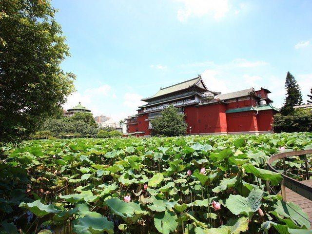 台北「文化藝術涵氧」最高區域是中正區,串連這些文化場域的軸線廊道,則是擁老靈魂。