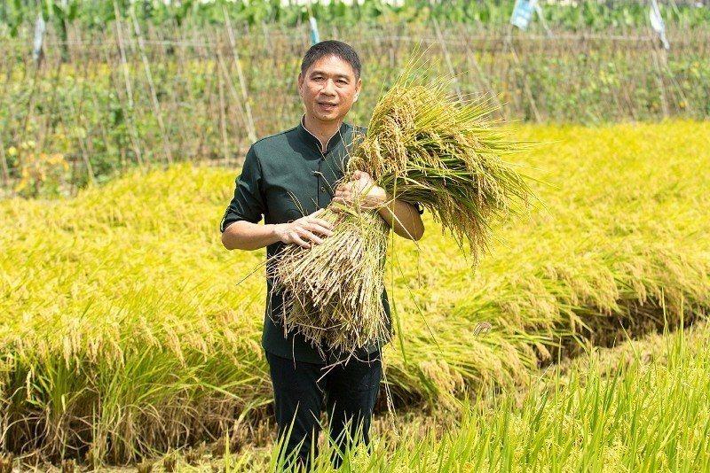 「長春健康素食餐飲連鎖」總經理張寶仁,6月中旬到雲林,與稻農共同下田,體驗稻米豐...