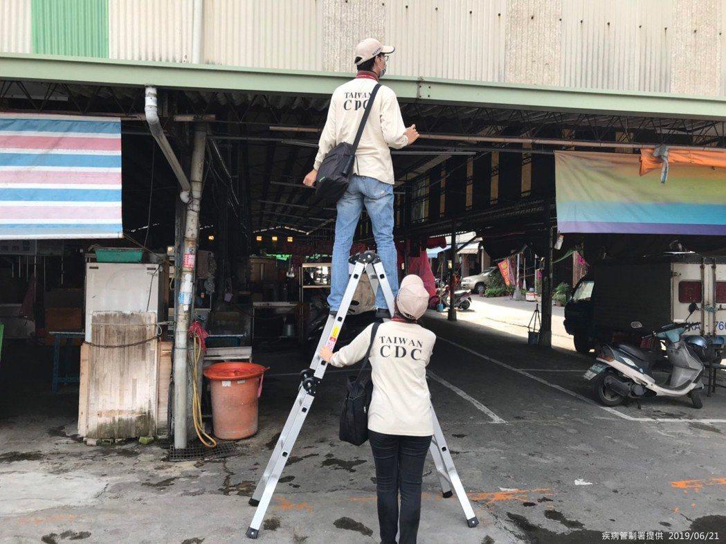 疾管署防疫人員仔細檢視金獅湖市場天溝,確保無「隱藏性孳生源」。圖/疾管署提供