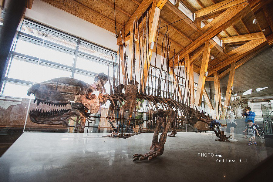 圖/除了常態展覽外,園區內還會推出限時特展,而目前展出的主題是「當恐龍與大象相遇...