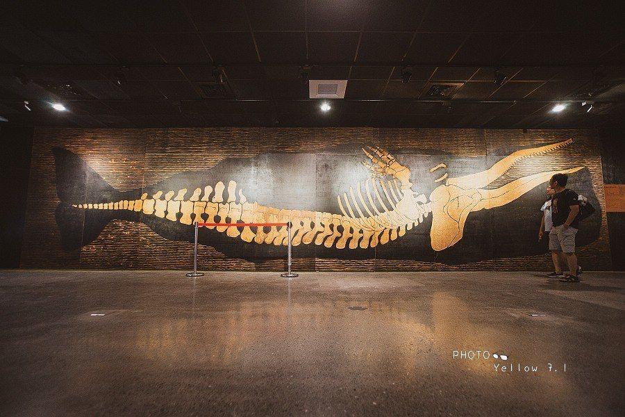 圖/在這裡還有著抹香鯨的骨骼裝置藝術,藉由翻肚的鯨魚來傳達大眾對環境的友善,別讓...