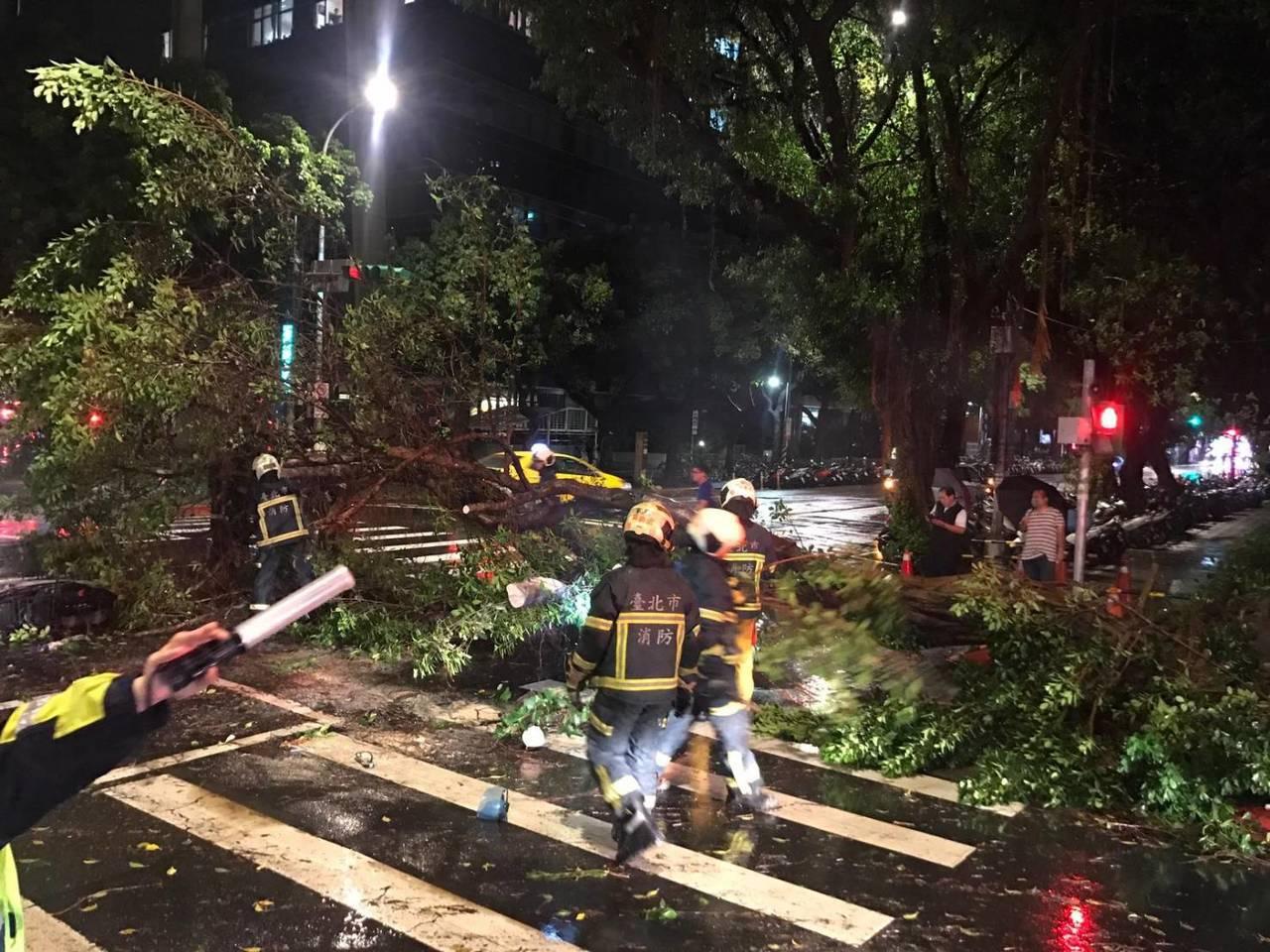 中山南路上一棵路樹因雨勢太大,晚上8時許突然倒塌,直接壓中路旁的女機車騎士。記者...