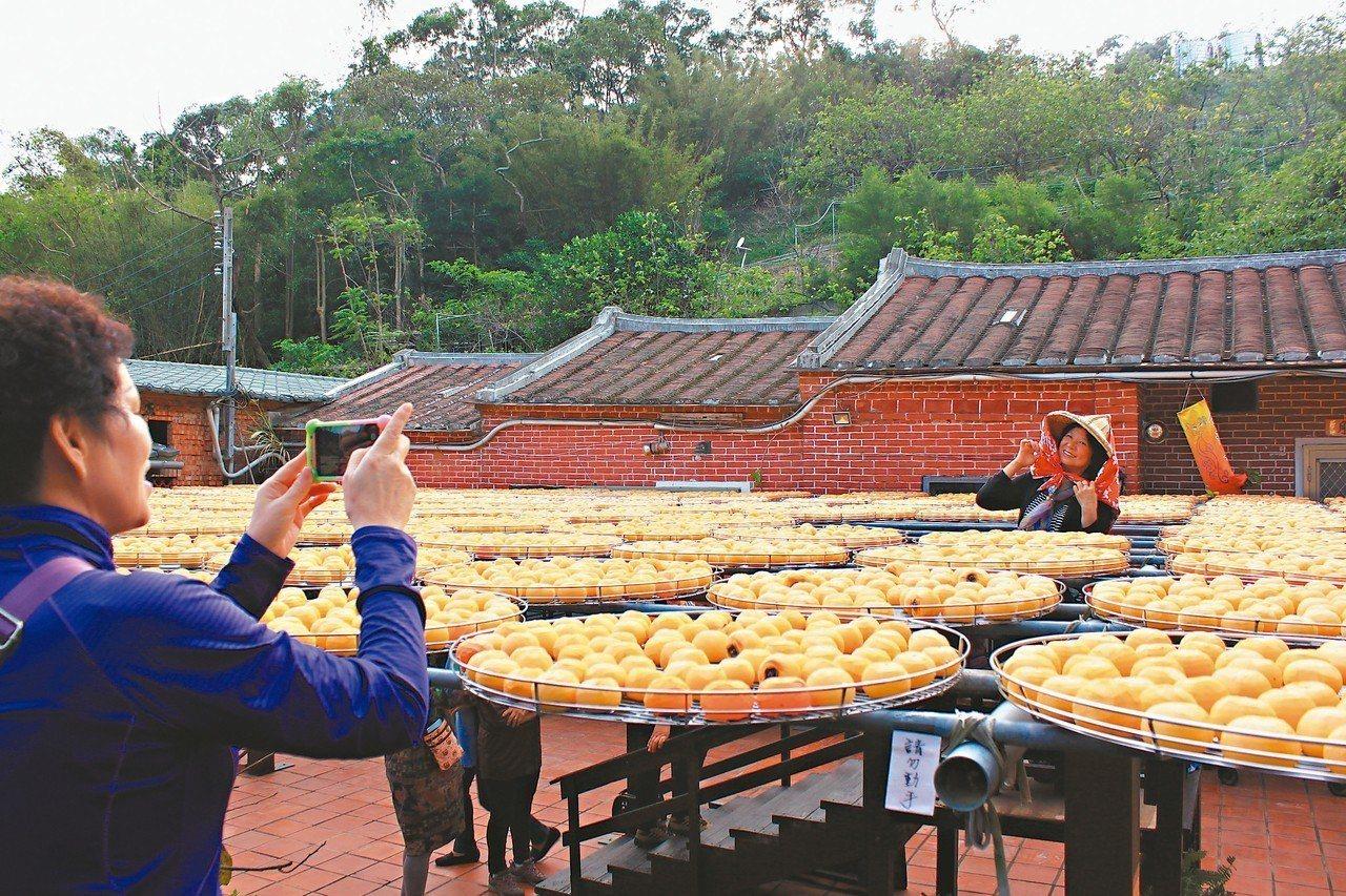 新埔大墩山休閒農業區劃設範圍涵蓋4個里,是知名的柿餅出產區。 圖/聯合報系資料照...