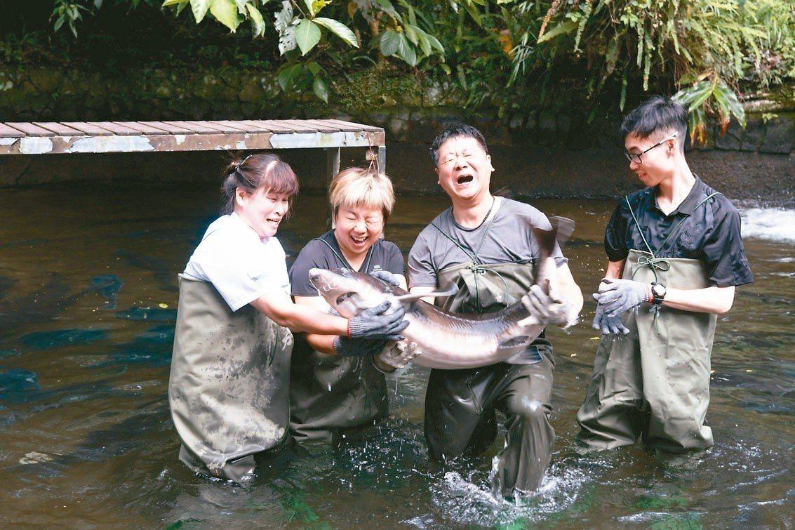 千戶鱘農示範下水摸魚,讓民眾對台灣養殖漁業有更深的體驗。