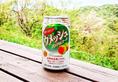 酒鬼們找到寶了!日本推出「不醉梅酒」喝了還能消除疲勞