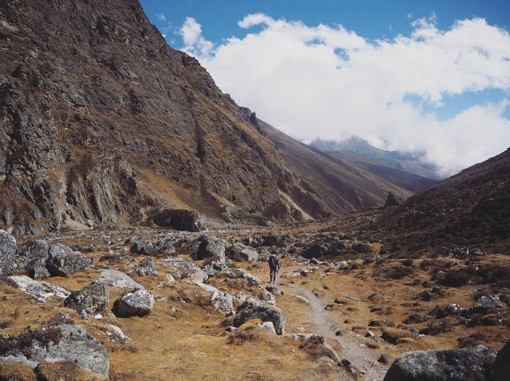海拔4700米,除了小草再沒有高大的植物。