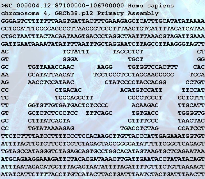 人類第四號染色體的一小部分的序列資料的排字。圖/取自國家太空中心第一屆露出盃活動...