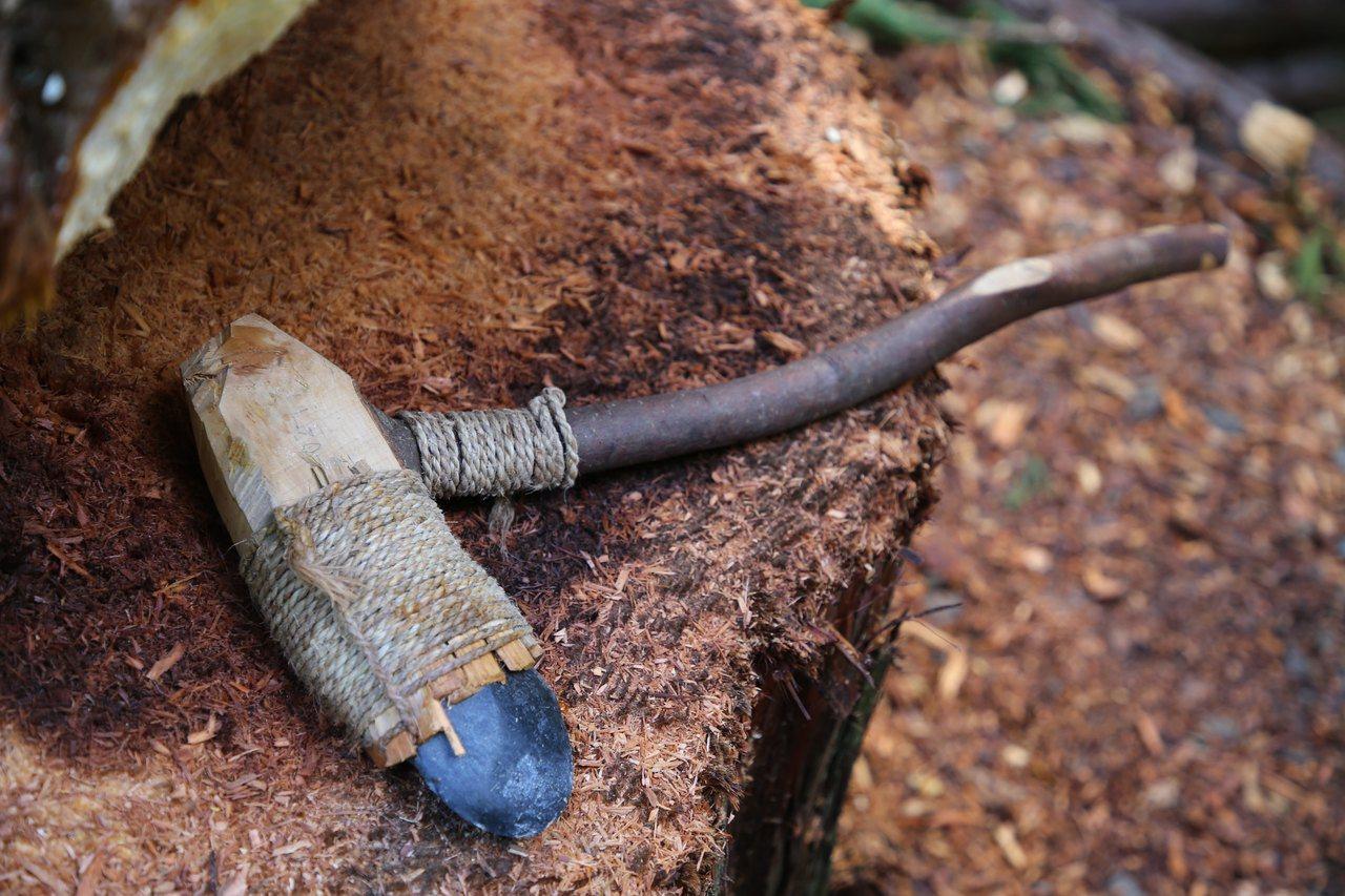 日本國立科學博物館仿製舊石器時代的石斧進行實驗筏木。圖/海部陽介提供