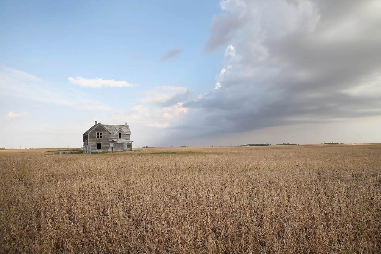 美國南達科他州大豆田。此為示意圖,非文中所述農田。法新社