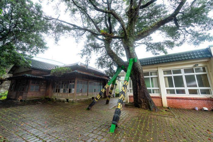 林管處大溪工作站復興分站招待所日據時期啟用,有多年歷史,也是台灣林業發展過程中的...