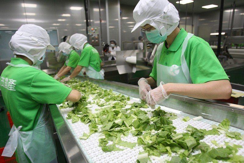 近年來農委會不斷倡導,才慢慢將所謂「農藥零檢出」觀念,導向關注農民是否使用對環境友善的農法。 圖/新北市政府提供