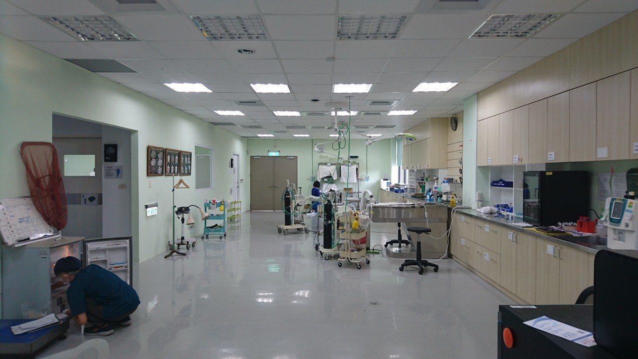 特生中心野生動物急救站內有最先進的開刀房,為動物救傷提供最完善的醫療。記者黑中亮...