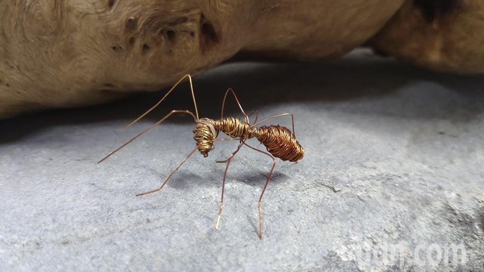 銅線螞蟻栩栩如生。記者李京昇/攝影
