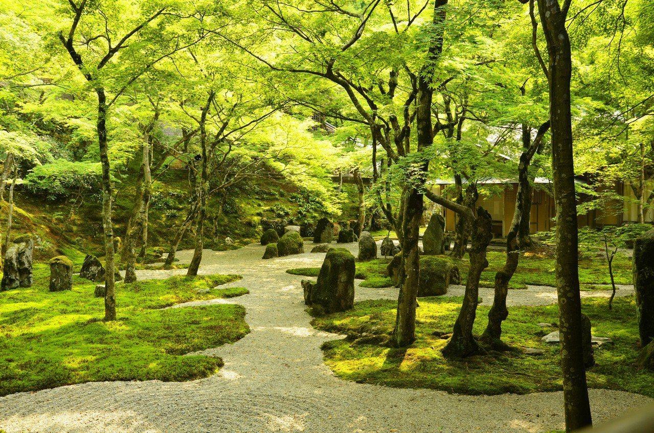 由石頭、苔癬與白沙打造而成的光明禪寺,乃是日本著名的「苔寺」。圖/樂天旅遊提供