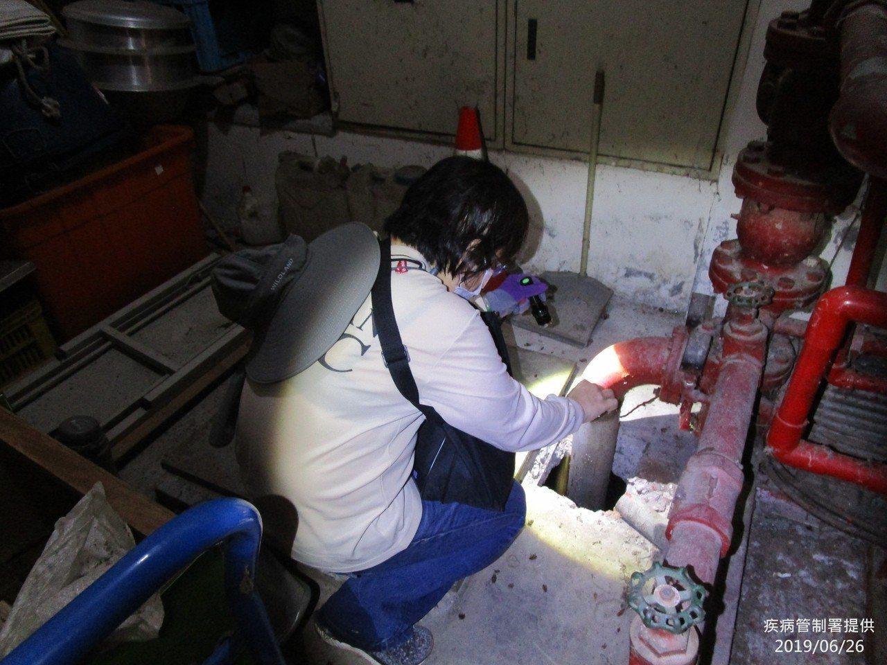 疾管署防疫人員仔細檢視大樓內管線是否有隱藏性孳生源。圖/疾管署提供