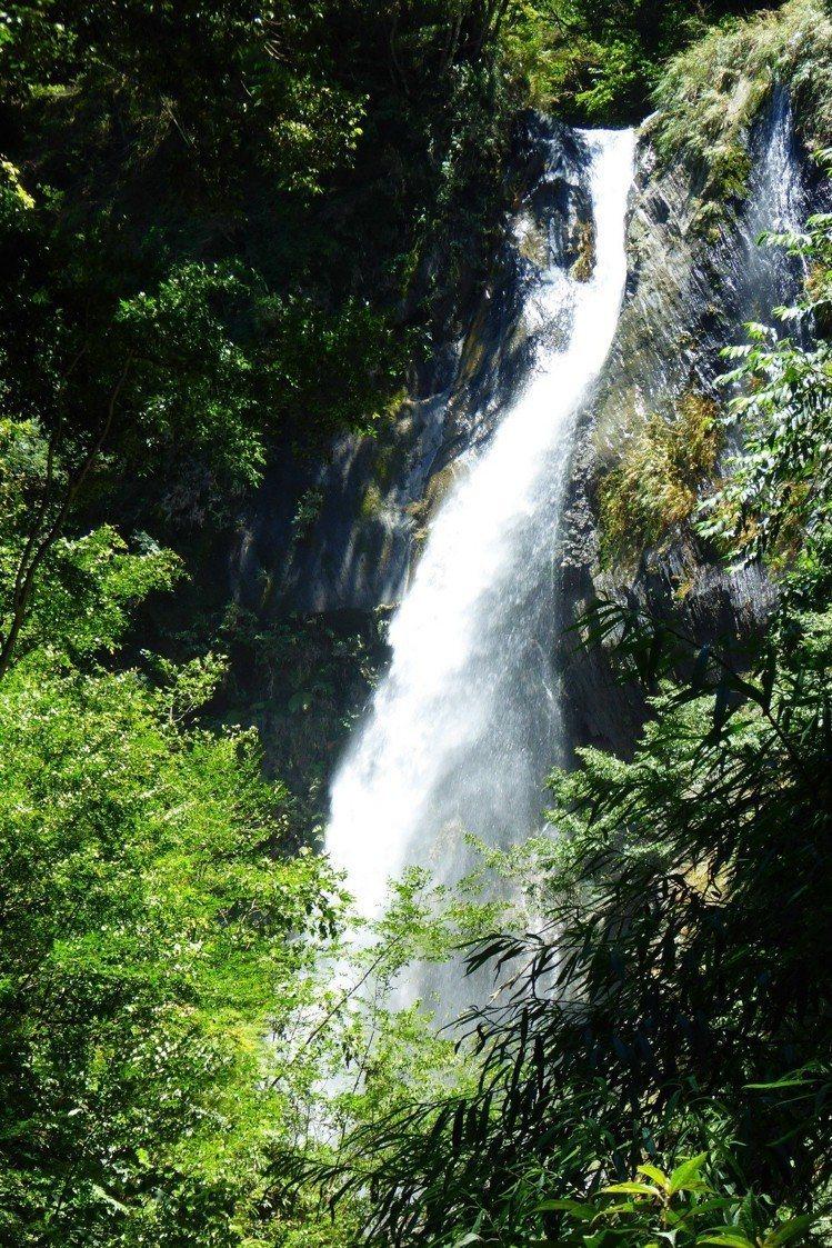 梅雨季節過後,瀑布水量豐沛,正是前來欣賞的好時機。圖/南投林管處提供