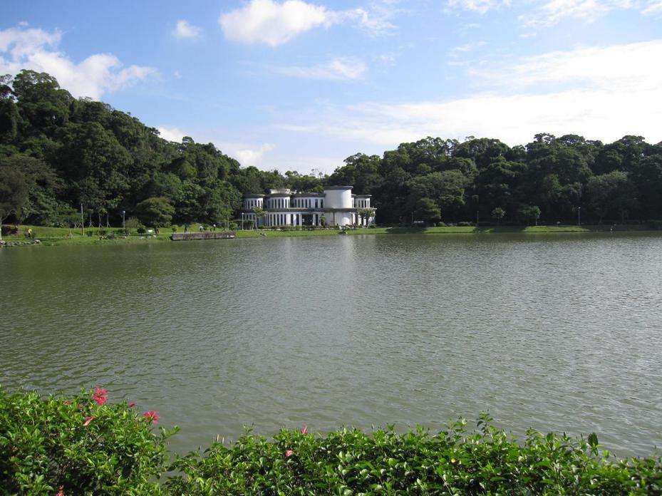 台北市碧湖公園屢遭反映湖水優養化嚴重,北市府評估釣客撒餌為主因,擬限縮垂釣範圍。圖/台北市公園處提供