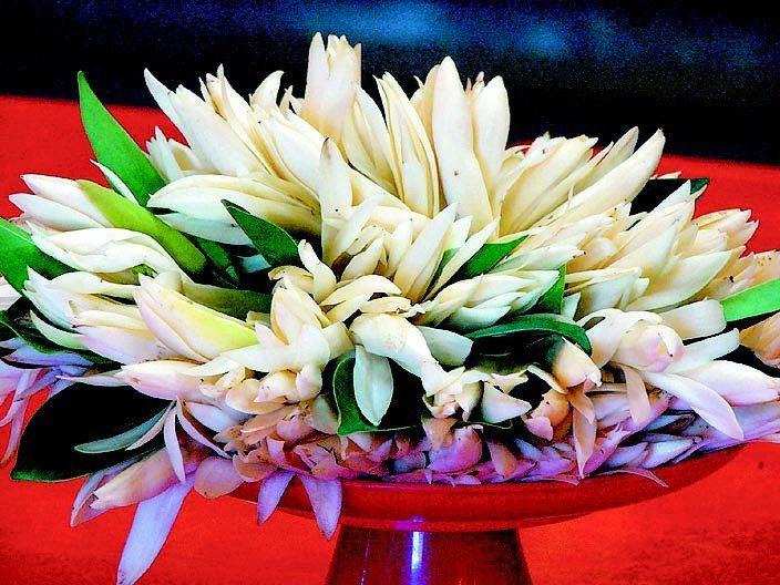 一名網友日前向一位阿姨買了一串100元的玉蘭花,沒想到付了錢之後對方沒有給她花,...