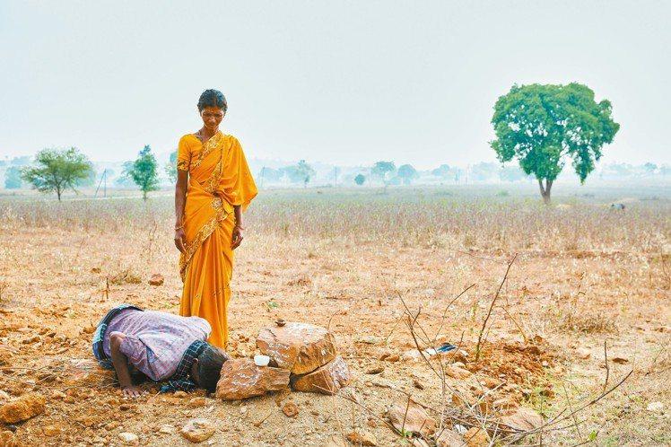 印度農民跪在他的乳牛的墳前哀悼;他的牛因為受到住在附近國家公園保護區內的老虎攻擊...